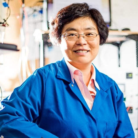 Professor Chang-Hasnain